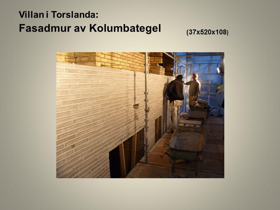 Villan i Torslanda : Fasadmur av Kolumbategel (37x520x108 )