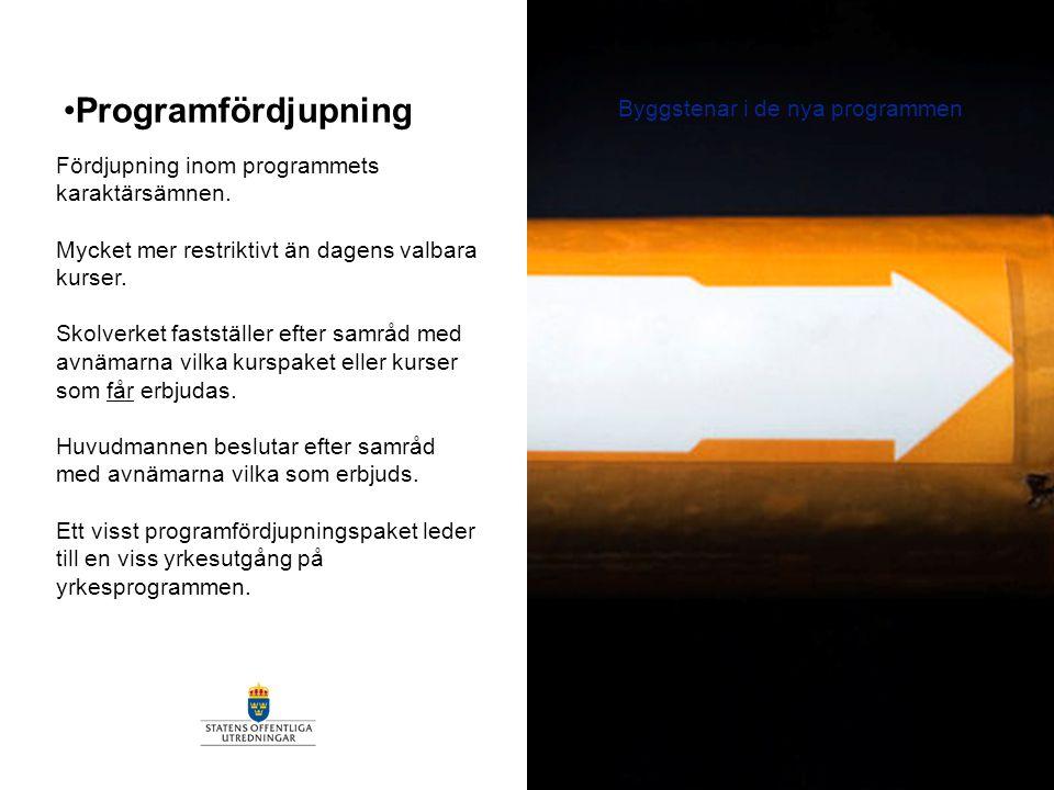 Programfördjupning Byggstenar i de nya programmen Fördjupning inom programmets karaktärsämnen. Mycket mer restriktivt än dagens valbara kurser. Skolve