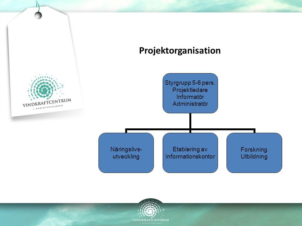 Projektorganisation Styrgrupp 5-6 pers.