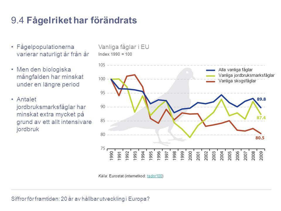 Siffror för framtiden: 20 år av hållbar utveckling i Europa? 9.4 Fågelriket har förändrats Fågelpopulationerna varierar naturligt år från år Men den b