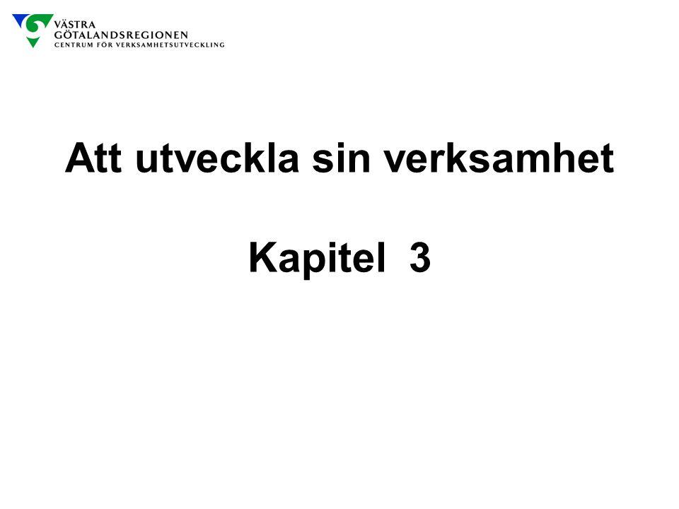 Att utveckla sin verksamhet Kapitel 3
