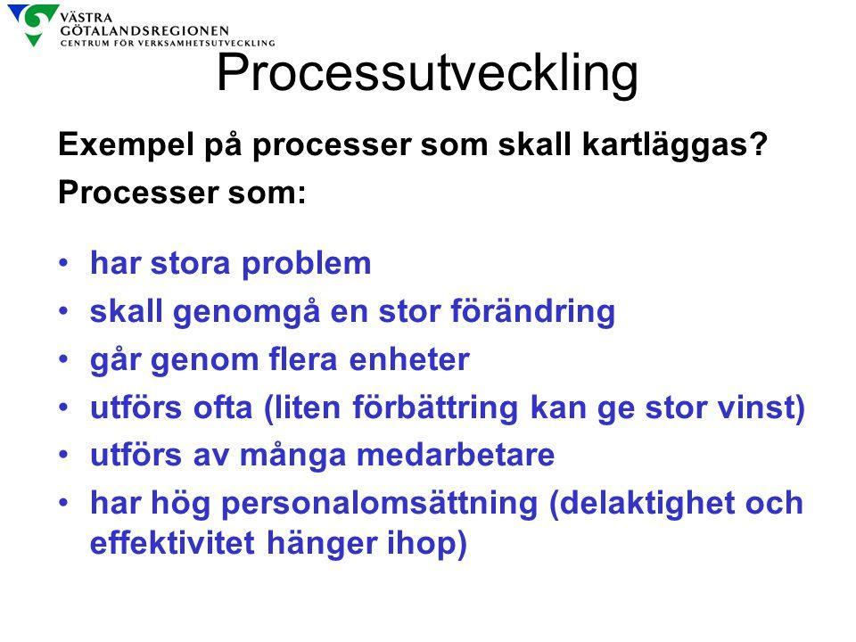 Processutveckling Exempel på processer som skall kartläggas? Processer som: har stora problem skall genomgå en stor förändring går genom flera enheter