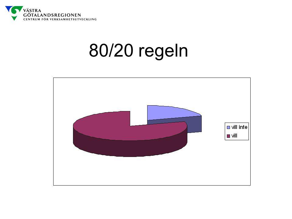 80/20 regeln