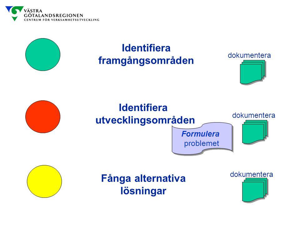 Identifiera framgångsområden dokumentera Identifiera utvecklingsområden Fånga alternativa lösningar dokumentera Formulera problemet Formulera probleme