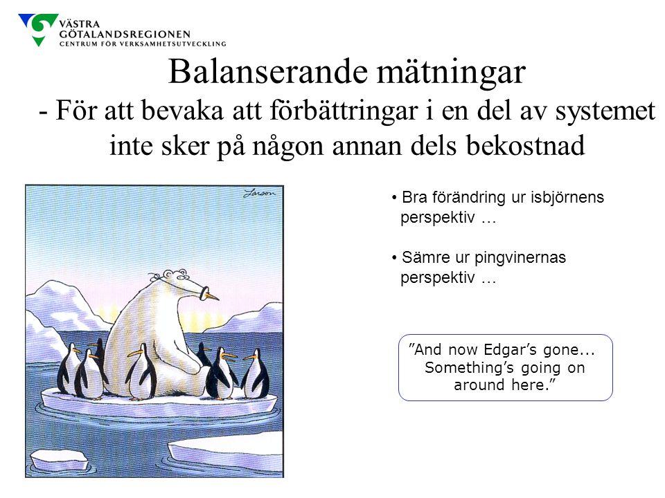 Balanserande mätningar - För att bevaka att förbättringar i en del av systemet inte sker på någon annan dels bekostnad Bra förändring ur isbjörnens pe
