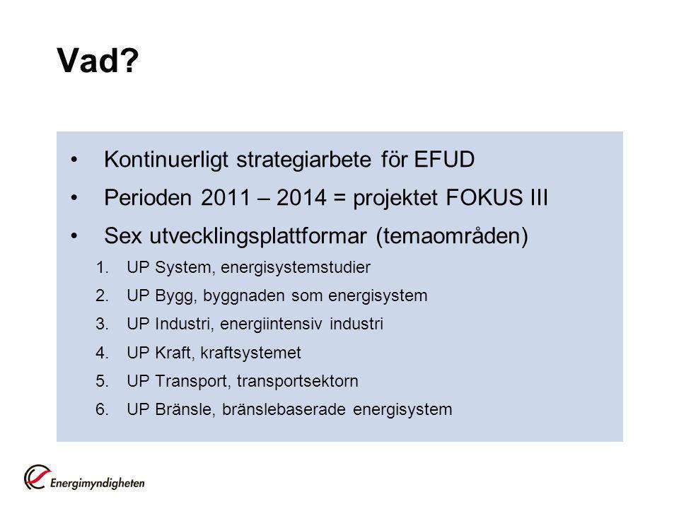 Vad? Kontinuerligt strategiarbete för EFUD Perioden 2011 – 2014 = projektet FOKUS III Sex utvecklingsplattformar (temaområden) 1.UP System, energisyst