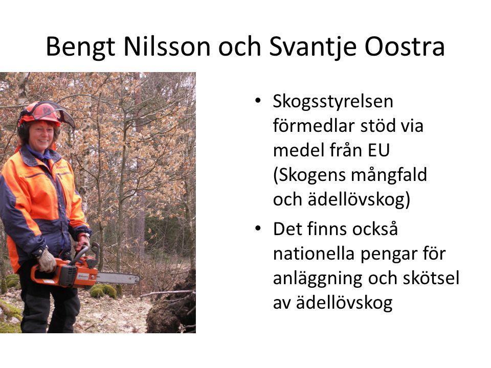 Bengt Nilsson och Svantje Oostra Skogsstyrelsen förmedlar stöd via medel från EU (Skogens mångfald och ädellövskog) Det finns också nationella pengar för anläggning och skötsel av ädellövskog