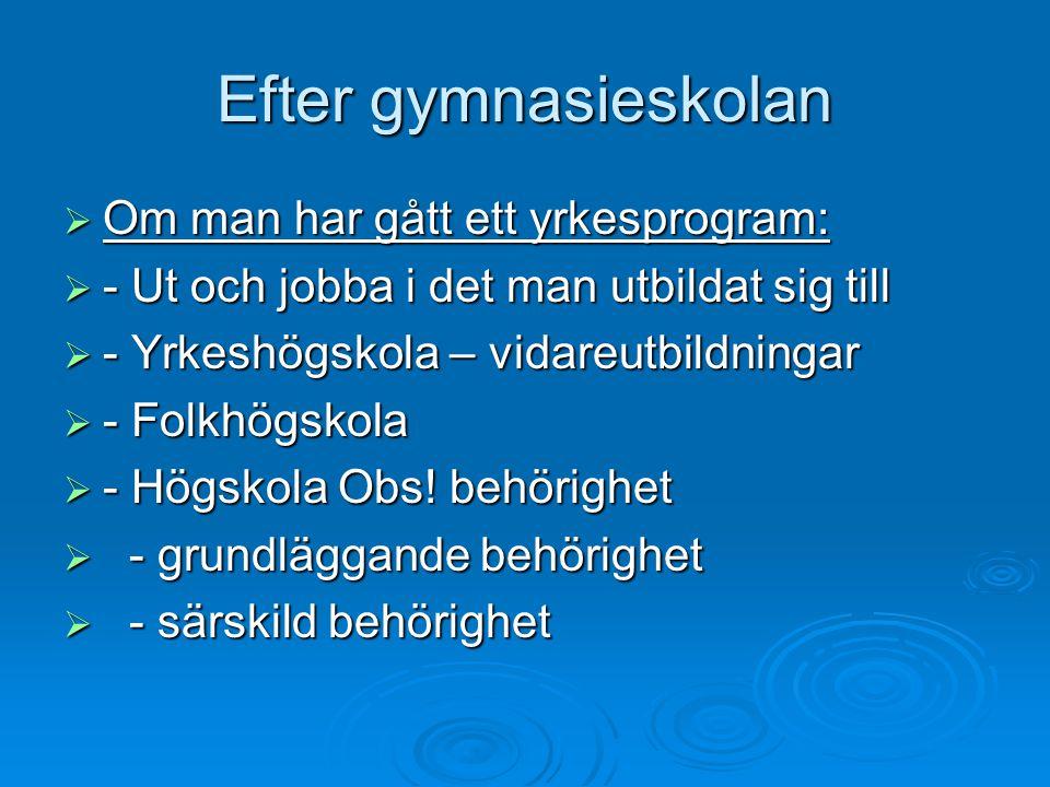 Efter gymnasieskolan  Om man har gått ett yrkesprogram:  - Ut och jobba i det man utbildat sig till  - Yrkeshögskola – vidareutbildningar  - Folkhögskola  - Högskola Obs.