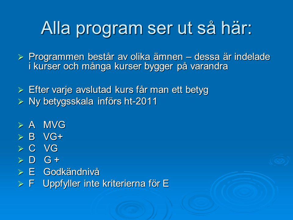 Alla program ser ut så här:  Programmen består av olika ämnen – dessa är indelade i kurser och många kurser bygger på varandra  Efter varje avslutad kurs får man ett betyg  Ny betygsskala införs ht-2011  A MVG  B VG+  C VG  D G +  E Godkändnivå  F Uppfyller inte kriterierna för E