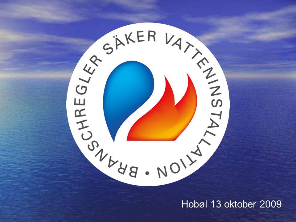 Nordiskt godkännande för VVS-produkter Thomas Helmerson vd Säker Vatten AB
