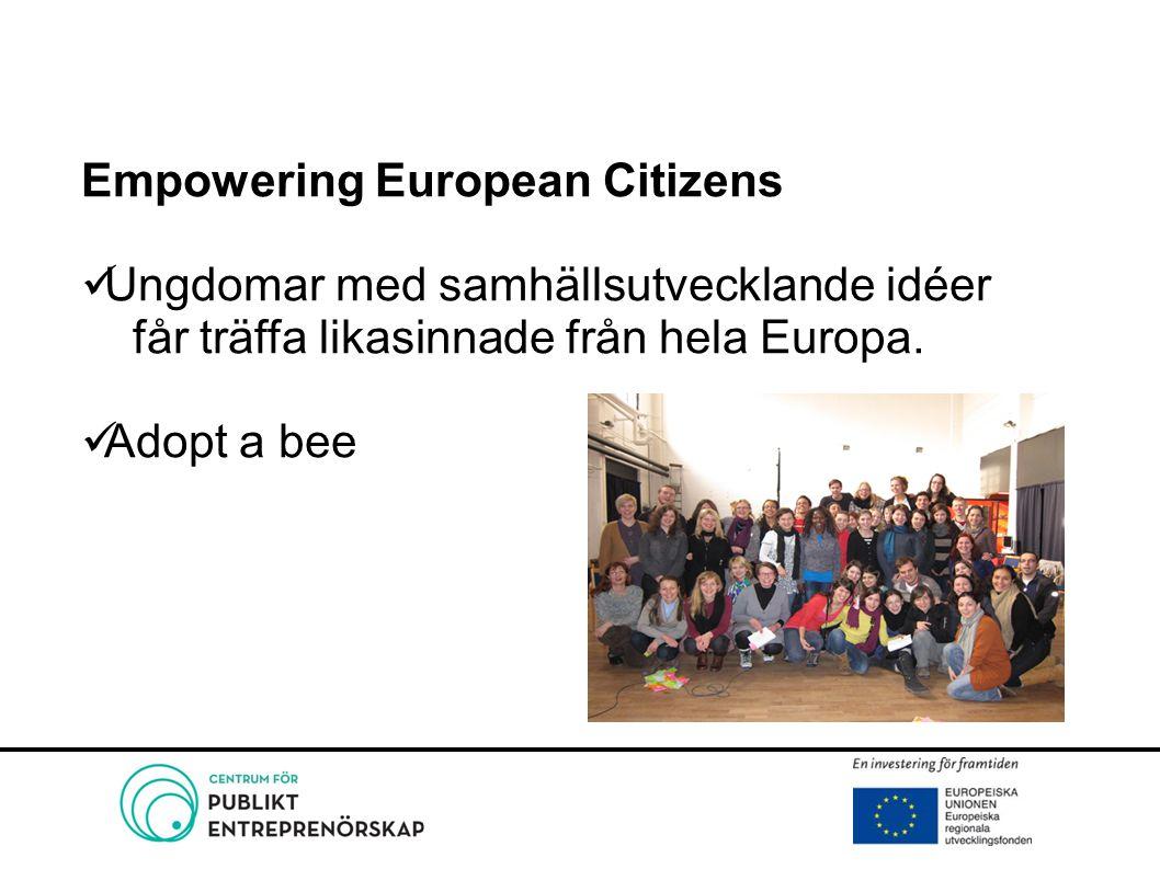 Empowering European Citizens Ungdomar med samhällsutvecklande idéer får träffa likasinnade från hela Europa. Adopt a bee