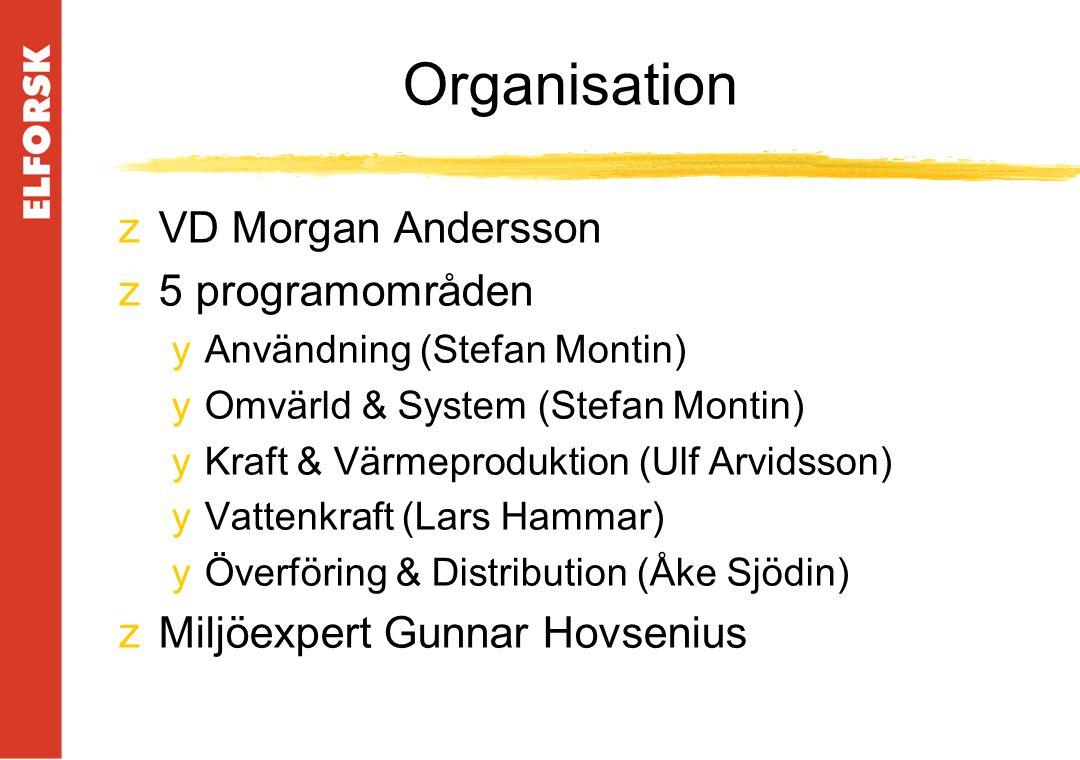Organisation zVD Morgan Andersson z5 programområden yAnvändning (Stefan Montin) yOmvärld & System (Stefan Montin) yKraft & Värmeproduktion (Ulf Arvidsson) yVattenkraft (Lars Hammar) yÖverföring & Distribution (Åke Sjödin) zMiljöexpert Gunnar Hovsenius