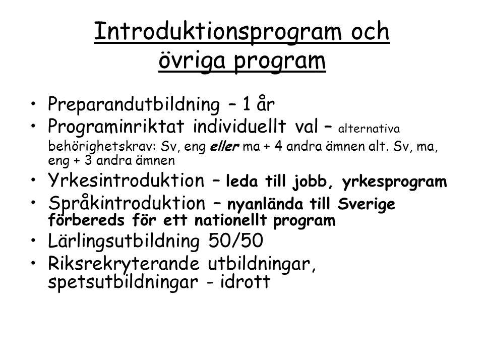 Introduktionsprogram och övriga program Preparandutbildning – 1 år Programinriktat individuellt val – alternativa behörighetskrav: Sv, eng eller ma +