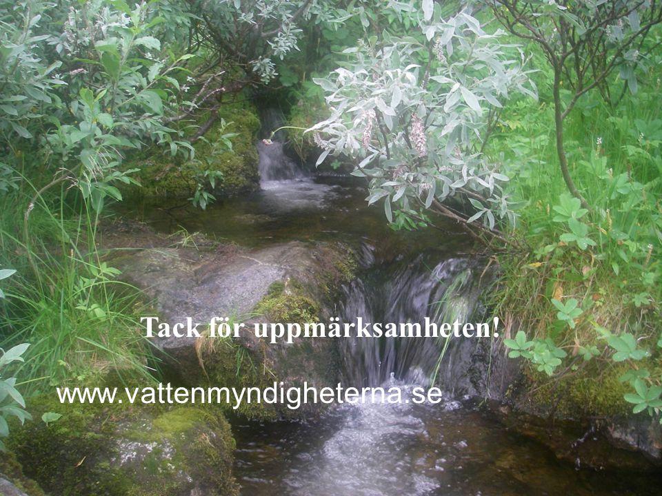 www.vattenmyndigheterna.se Tack för uppmärksamheten!