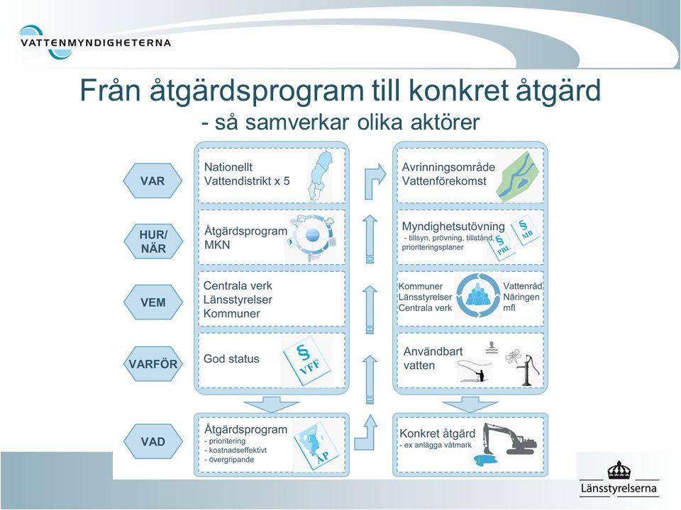 Från åtgärdsprogram till konkret åtgärd - så samverkar olika aktörer