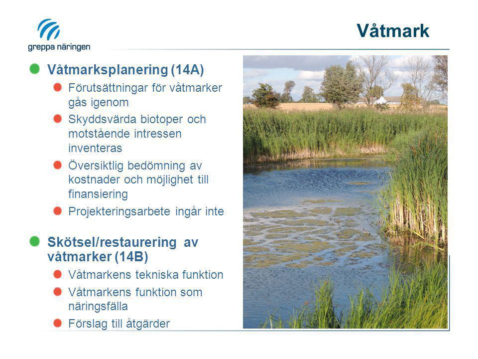 Våtmarksplanering (14A) Förutsättningar för våtmarker gås igenom Skyddsvärda biotoper och motstående intressen inventeras Översiktlig bedömning av kos