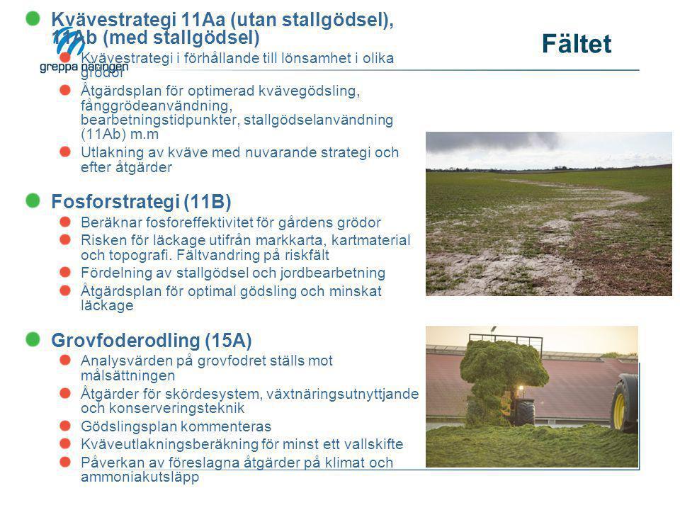 Fältet Översyn av dränering (14D) Vattenproblem på gården gås igenom på 1-4 fält Kartunderlag som dikningsföretag, täckdikningsplaner tas fram Förslag till åtgärder för förbättrad dränering Juridiken ska också belysas Markpackning (12A) Riskmoment beroende på jordart, tidpunkter för bearbetning, stallgödselspridning Markstruktur Genomgång av fältmaskiner och deras påverkan Önskvärda ringtryck vid aktuella arbetsmoment Växtföljd och Bördighet (12B) Jämförelse mellan dagens växtföljd på gården och olika alternativ Skillnader i ekonomisk utfall, mullhaltsförändring, utlakning och växtskyddsproblem diskuteras