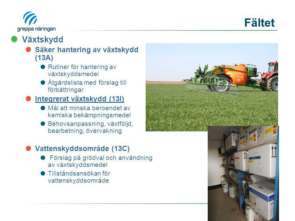Fältet Växtskydd Säker hantering av växtskydd (13A) Rutiner för hantering av växtskyddsmedel Åtgärdslista med förslag till förbättringar Integrerat vä