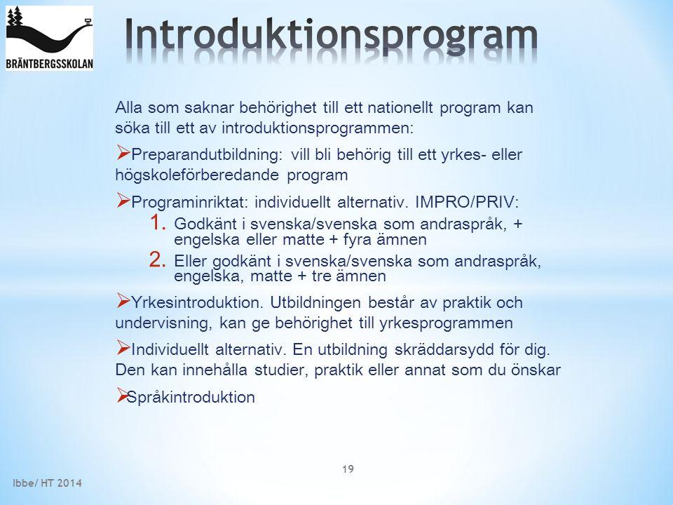 Alla som saknar behörighet till ett nationellt program kan söka till ett av introduktionsprogrammen:  Preparandutbildning: vill bli behörig till ett