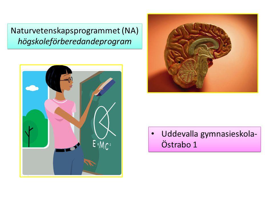 Naturvetenskapsprogrammet (NA) högskoleförberedandeprogram Naturvetenskapsprogrammet (NA) högskoleförberedandeprogram Uddevalla gymnasieskola- Östrabo