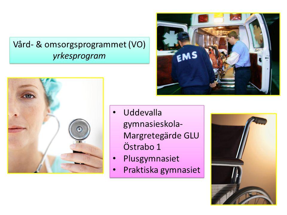 Vård- & omsorgsprogrammet (VO) yrkesprogram Vård- & omsorgsprogrammet (VO) yrkesprogram Uddevalla gymnasieskola- Margretegärde GLU Östrabo 1 Plusgymna