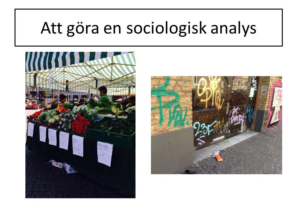 Att göra en sociologisk analys