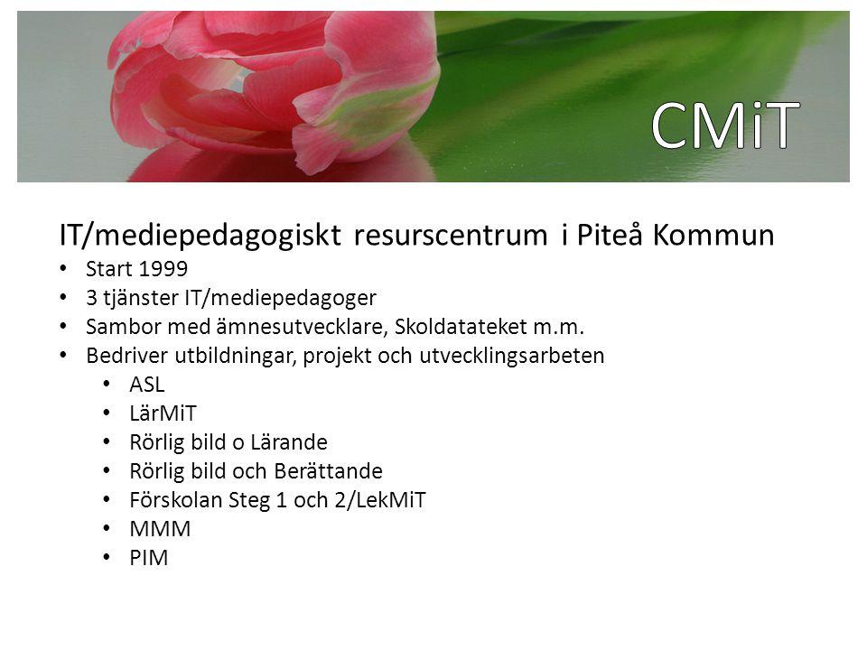 IT/mediepedagogiskt resurscentrum i Piteå Kommun Start 1999 3 tjänster IT/mediepedagoger Sambor med ämnesutvecklare, Skoldatateket m.m. Bedriver utbil