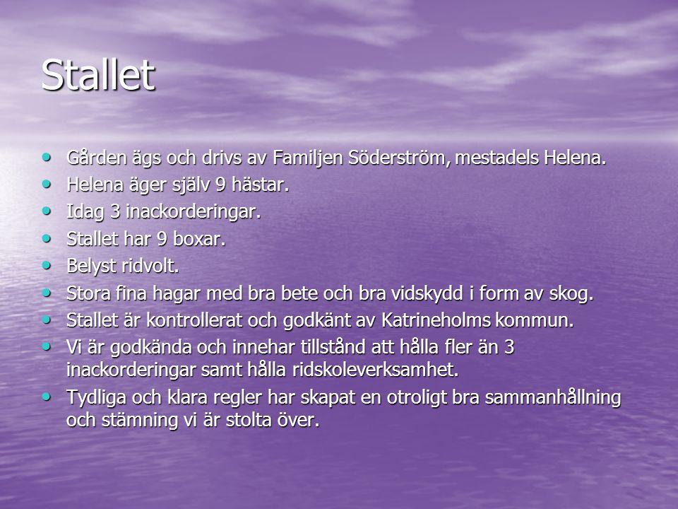 Stallet Gården ägs och drivs av Familjen Söderström, mestadels Helena. Gården ägs och drivs av Familjen Söderström, mestadels Helena. Helena äger själ
