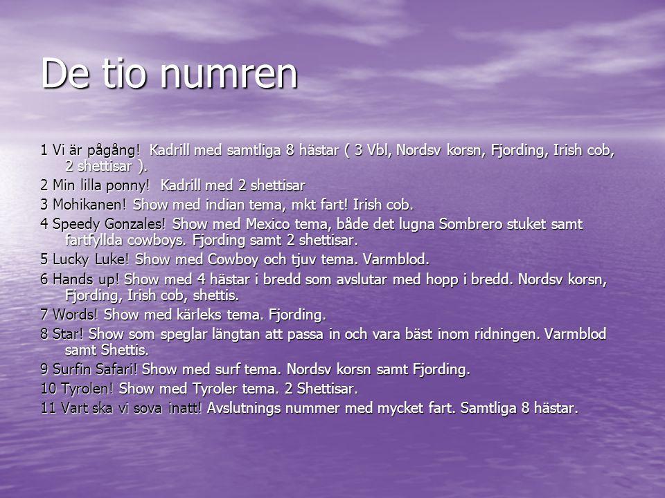 De tio numren 1 Vi är pågång! Kadrill med samtliga 8 hästar ( 3 Vbl, Nordsv korsn, Fjording, Irish cob, 2 shettisar ). 2 Min lilla ponny! Kadrill med