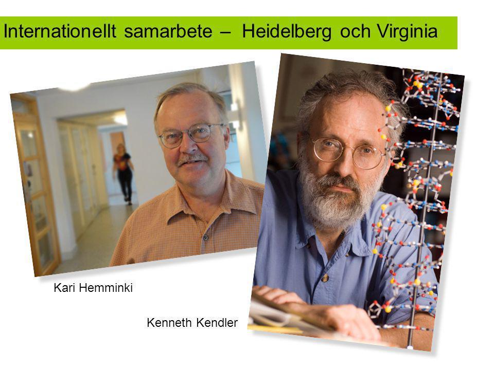 Kenneth Kendler International collaboration – Internationellt samarbete – Heidelberg och Virginia Kari Hemminki