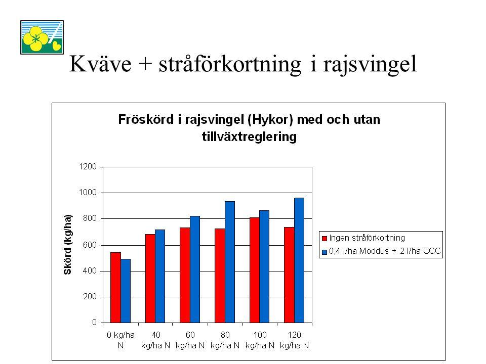 Skörd (kg/ha)Skörd (rel.tal) Faktor 1 – kvävetillförsel på våren vid tillväxtstart 0 kg/ha kväve519100 40 kg/ha kväve700135 60 kg/ha kväve777150 80 kg/ha kväve831160 100 kg/ha kväve838161 120 kg/ha kväve850164 LSD582 (ns) Faktor 2 – tillväxtreglering Ingen stråförkortning706100 0,4 l/ha Moddus + 2,0 l/ha CCC, stadie 37-39 799113 LSD151 (ns)