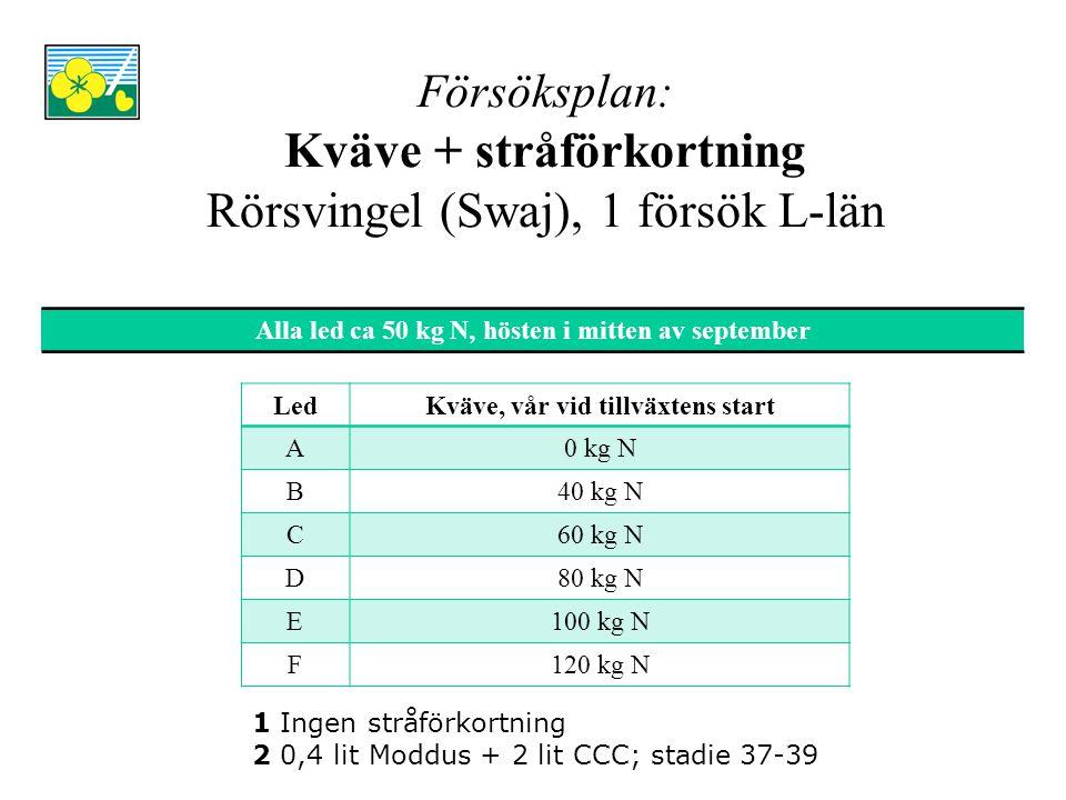 Försöksplan: Kväve + stråförkortning Rörsvingel (Swaj), 1 försök L-län LedKväve, vår vid tillväxtens start A0 kg N B40 kg N C60 kg N D80 kg N E100 kg N F120 kg N Alla led ca 50 kg N, hösten i mitten av september 1 Ingen stråförkortning 2 0,4 lit Moddus + 2 lit CCC; stadie 37-39