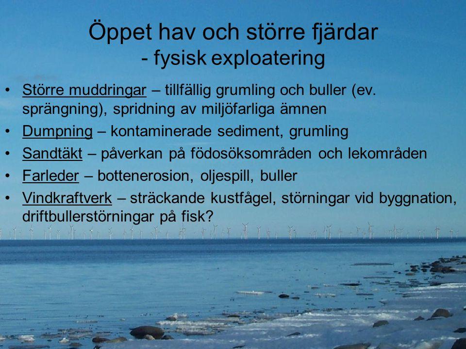 Öppet hav och större fjärdar - fysisk exploatering Större muddringar – tillfällig grumling och buller (ev. sprängning), spridning av miljöfarliga ämne