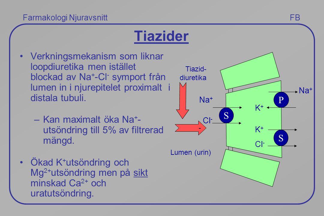 Tiazider Verkningsmekanism som liknar loopdiuretika men istället blockad av Na + -Cl - symport från lumen in i njurepitelet proximalt i distala tubuli