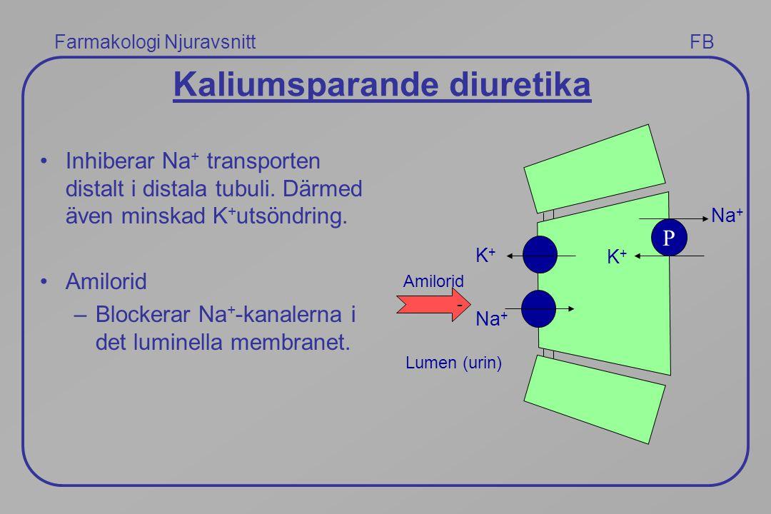Farmakologi Njuravsnitt FB Kaliumsparande diuretika Inhiberar Na + transporten distalt i distala tubuli. Därmed även minskad K + utsöndring. Amilorid