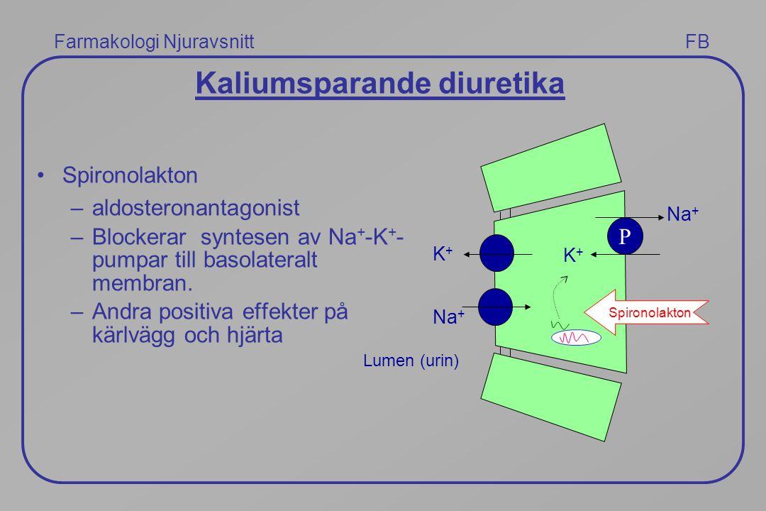 Farmakologi Njuravsnitt FB Kaliumsparande diuretika Spironolakton –aldosteronantagonist –Blockerar syntesen av Na + -K + - pumpar till basolateralt me