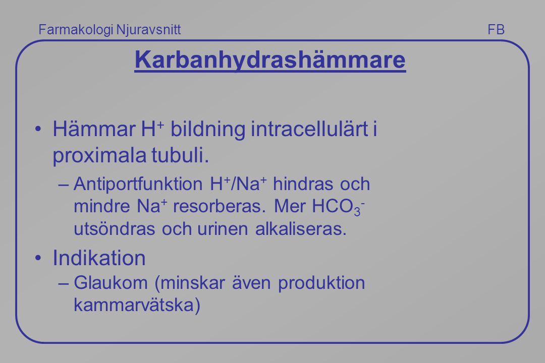 Farmakologi Njuravsnitt FB Karbanhydrashämmare Hämmar H + bildning intracellulärt i proximala tubuli. –Antiportfunktion H + /Na + hindras och mindre N