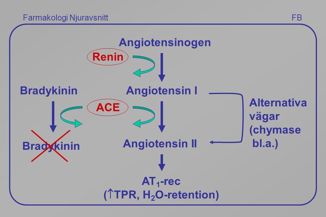 Farmakologi Njuravsnitt FB Angiotensinogen Renin Angiotensin I ACE Angiotensin II Alternativa vägar (chymase bl.a.) Bradykinin AT 1 -rec (  TPR, H 2