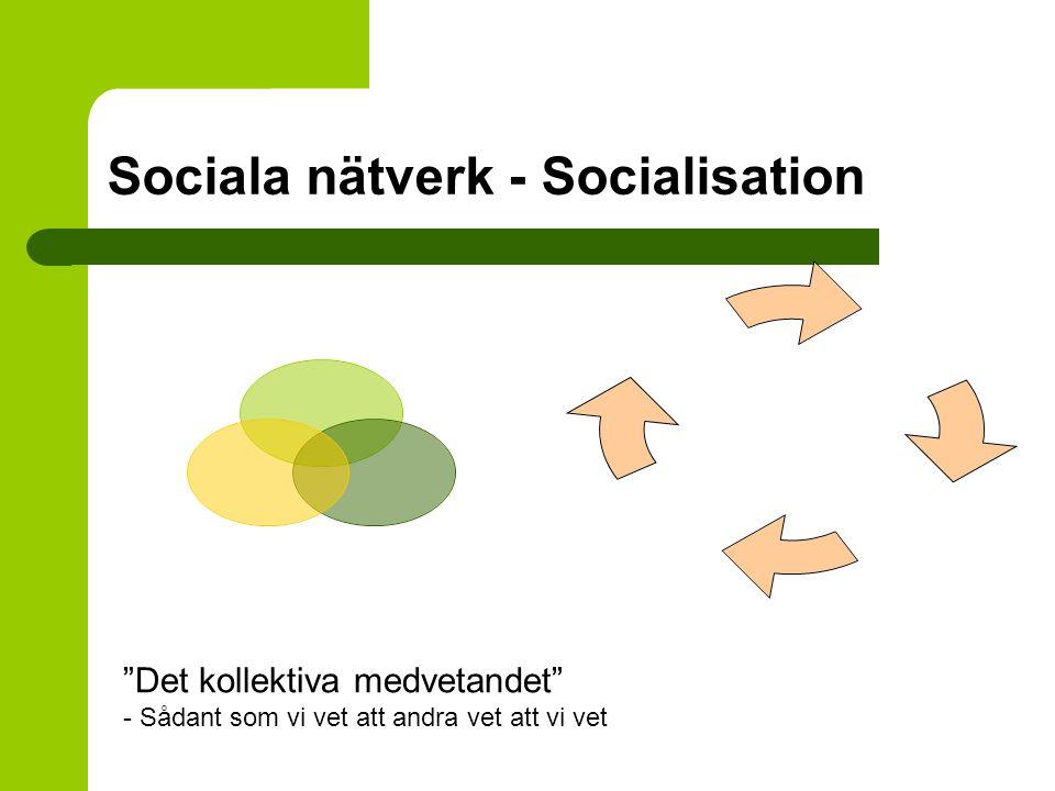 """Sociala nätverk - Socialisation """"Det kollektiva medvetandet"""" - Sådant som vi vet att andra vet att vi vet"""