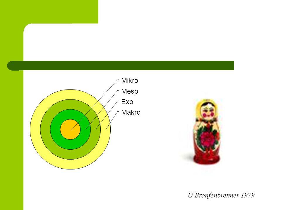 Sociala nätverk - demens Ogifta som lever ensamma löper större risk att utveckla demens än gifta som lever tillsammans Ju starkare socialt nätverk den äldre hade desto bättre skydd mot att utveckla demens – Civilstånd, kontakt med egna barn, kontakt med vänner Hypoteser; Hui-Xin Wang, (2001) The impact of lifesstyles on the occurrence of dementia .