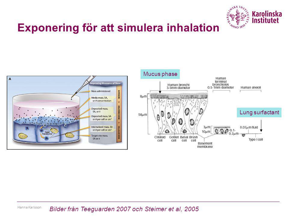 Exponering för att simulera inhalation Hanna Karlsson Bilder från Teeguarden 2007 och Steimer et al, 2005 Mucus phase Lung surfactant