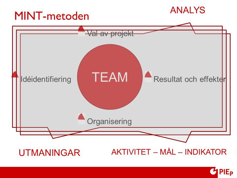 MINT-metoden Organisering TEAM Idéidentifiering Val av projekt Resultat och effekter UTMANINGAR AKTIVITET – MÅL – INDIKATOR ANALYS