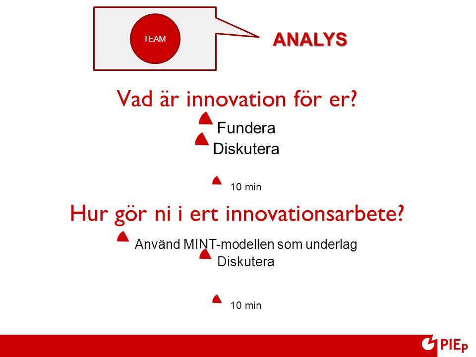 Vad är innovation för er? Hur gör ni i ert innovationsarbete? Fundera Diskutera 10 min Använd MINT-modellen som underlag Diskutera 10 min TEAM ANALYS