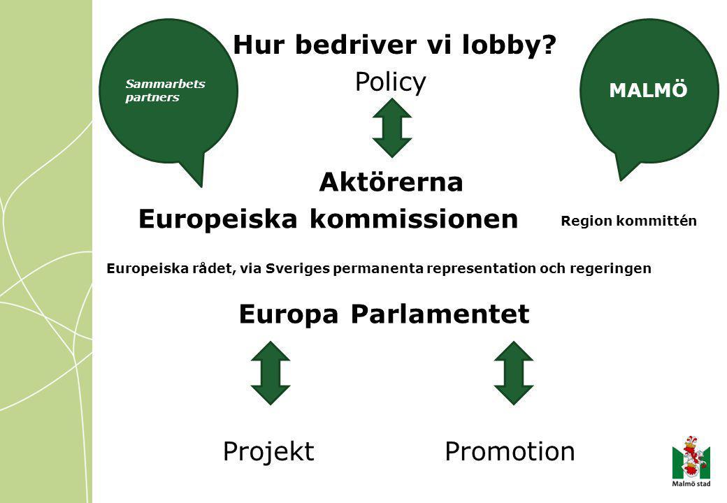 Policy ProjektPromotion Hur bedriver vi lobby.