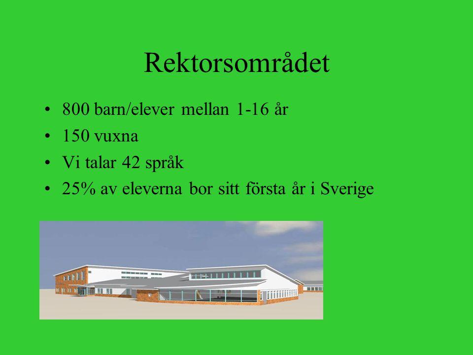 Rektorsområdet 800 barn/elever mellan 1-16 år 150 vuxna Vi talar 42 språk 25% av eleverna bor sitt första år i Sverige