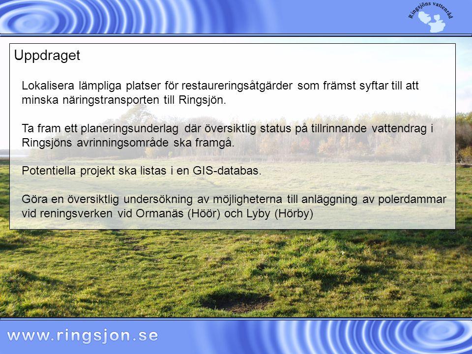 Lokalisera lämpliga platser för restaureringsåtgärder som främst syftar till att minska näringstransporten till Ringsjön.