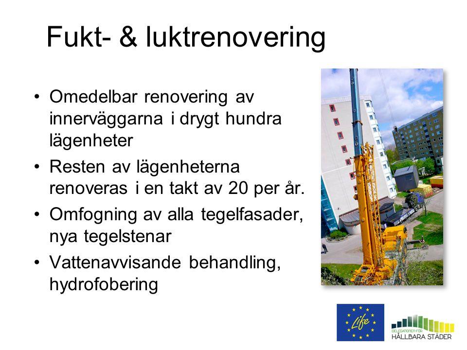 Fukt- & luktrenovering Omedelbar renovering av innerväggarna i drygt hundra lägenheter Resten av lägenheterna renoveras i en takt av 20 per år.