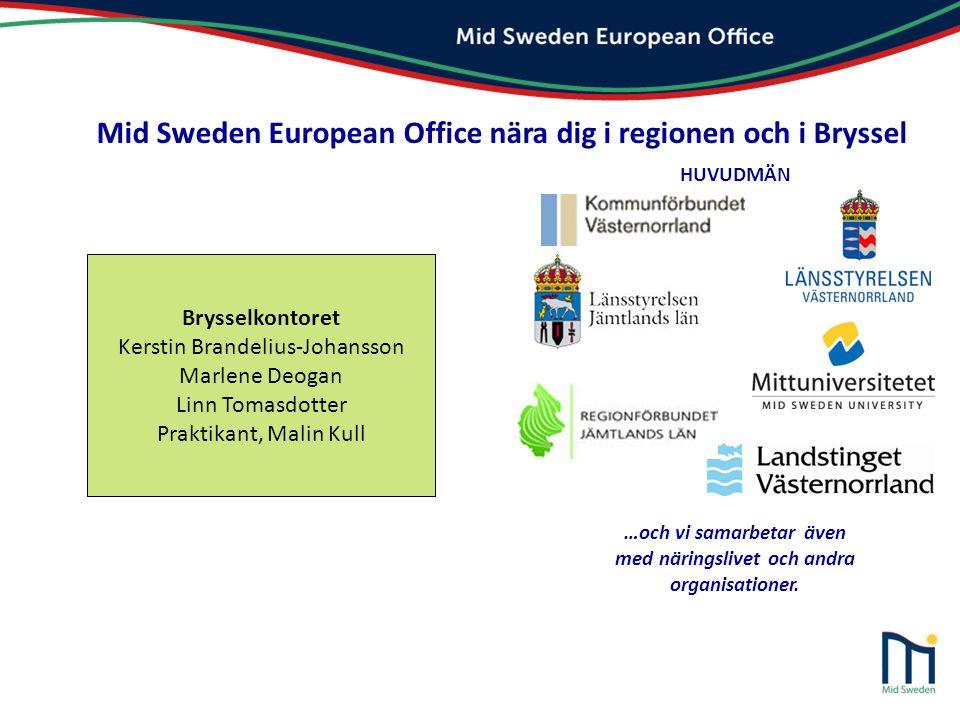 Bevakning av politikområden (påverkan) Transnationella projekt (programbevakning) Information (kunskapsspridning) Politiskt prioriterade bevakningsområden: EU: s sammanhållningspolitik/regionalpolitik Infrastruktur och transport Forskning och innovation Energi, miljö och klimat Näringslivsutveckling inkl.