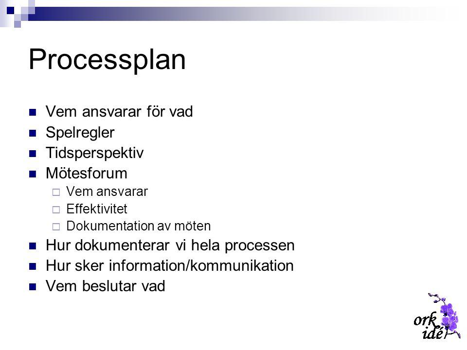 Processplan Vem ansvarar för vad Spelregler Tidsperspektiv Mötesforum  Vem ansvarar  Effektivitet  Dokumentation av möten Hur dokumenterar vi hela