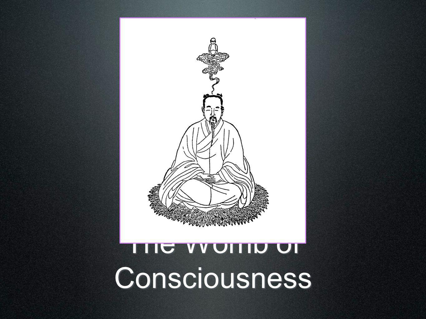 The Womb of Consciousness